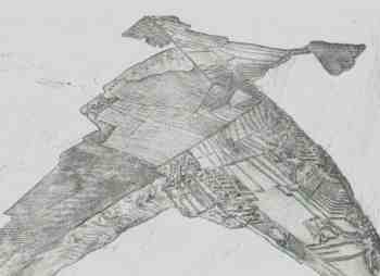 the drawing, a condor upside down